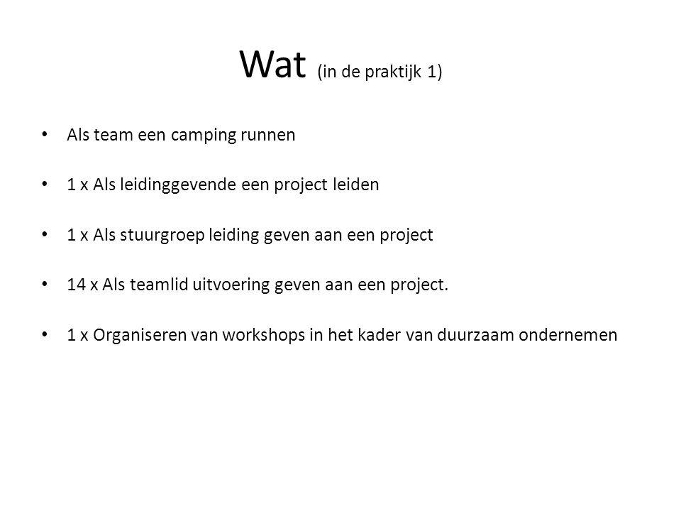 Wat (in de praktijk 1) Als team een camping runnen 1 x Als leidinggevende een project leiden 1 x Als stuurgroep leiding geven aan een project 14 x Als teamlid uitvoering geven aan een project.