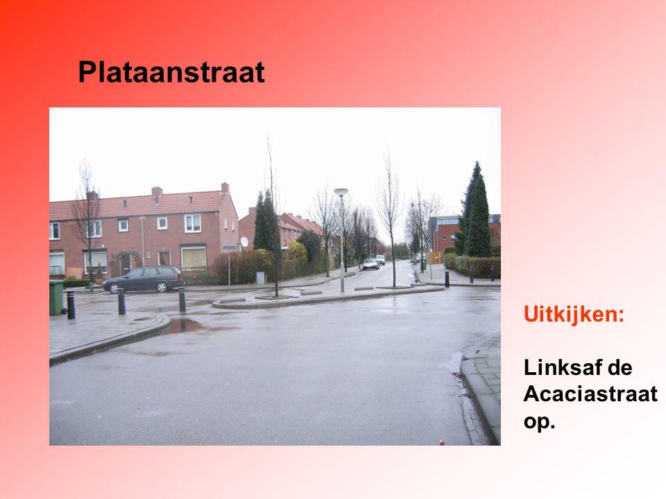 Plataanstraat Uitkijken: Linksaf de Acaciastraat op.