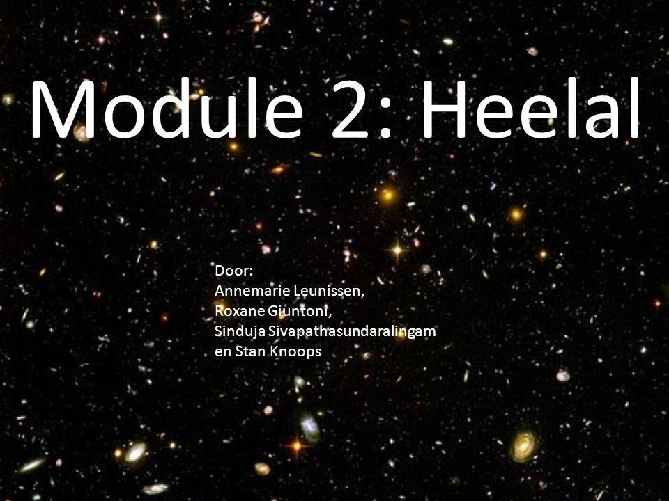 Module 2: Heelal Door: Annemarie Leunissen, Roxane Giuntoni, Sinduja Sivapathasundaralingam en Stan Knoops