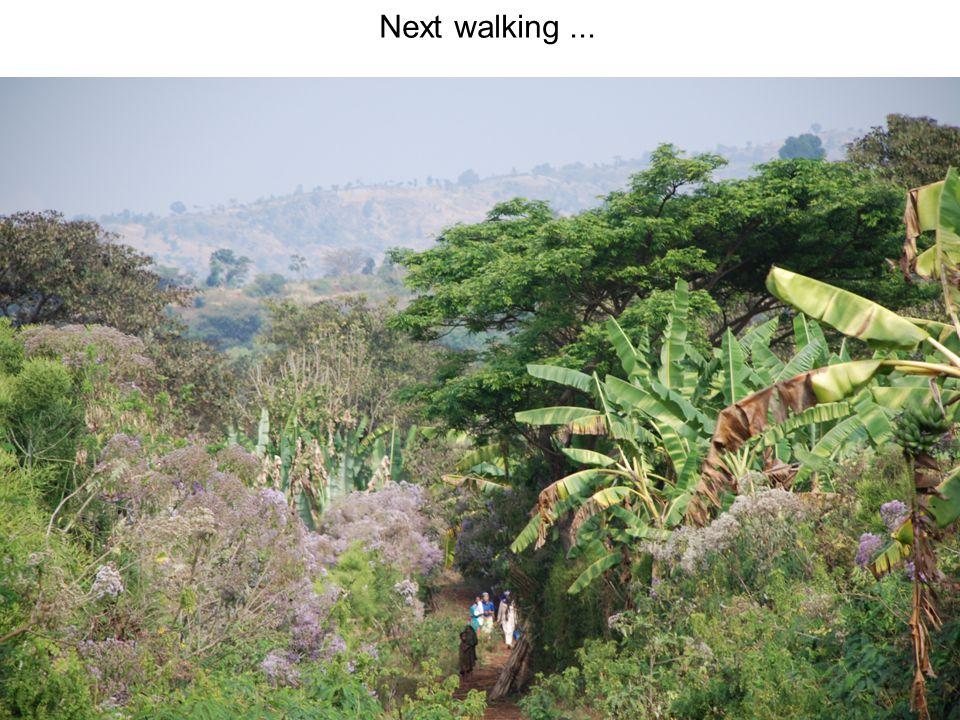 Next walking...