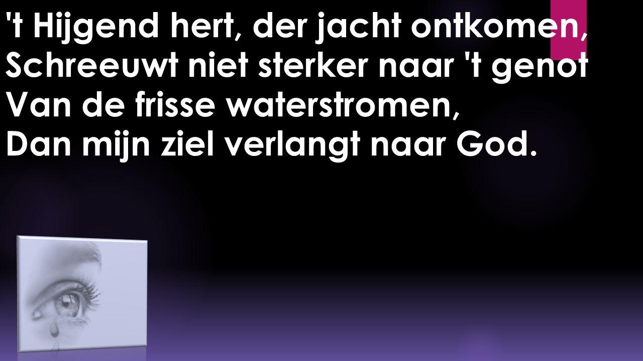 't Hijgend hert, der jacht ontkomen, Schreeuwt niet sterker naar 't genot Van de frisse waterstromen, Dan mijn ziel verlangt naar God.