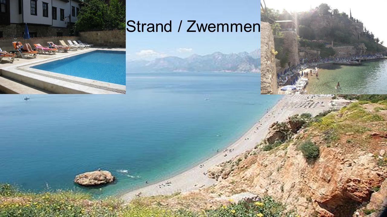 Strand / Zwemmen