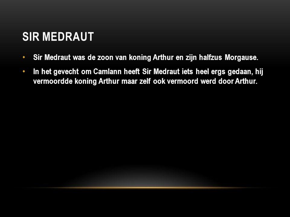 SIR MEDRAUT Sir Medraut was de zoon van koning Arthur en zijn halfzus Morgause. In het gevecht om Camlann heeft Sir Medraut iets heel ergs gedaan, hij