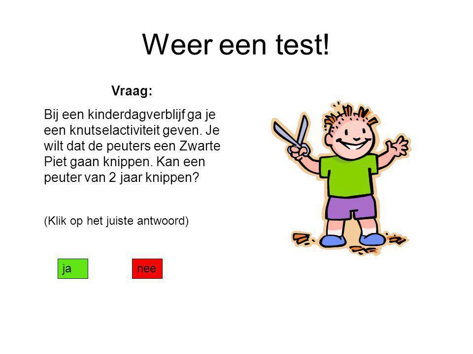 Weer een test! Vraag: Bij een kinderdagverblijf ga je een knutselactiviteit geven. Je wilt dat de peuters een Zwarte Piet gaan knippen. Kan een peuter