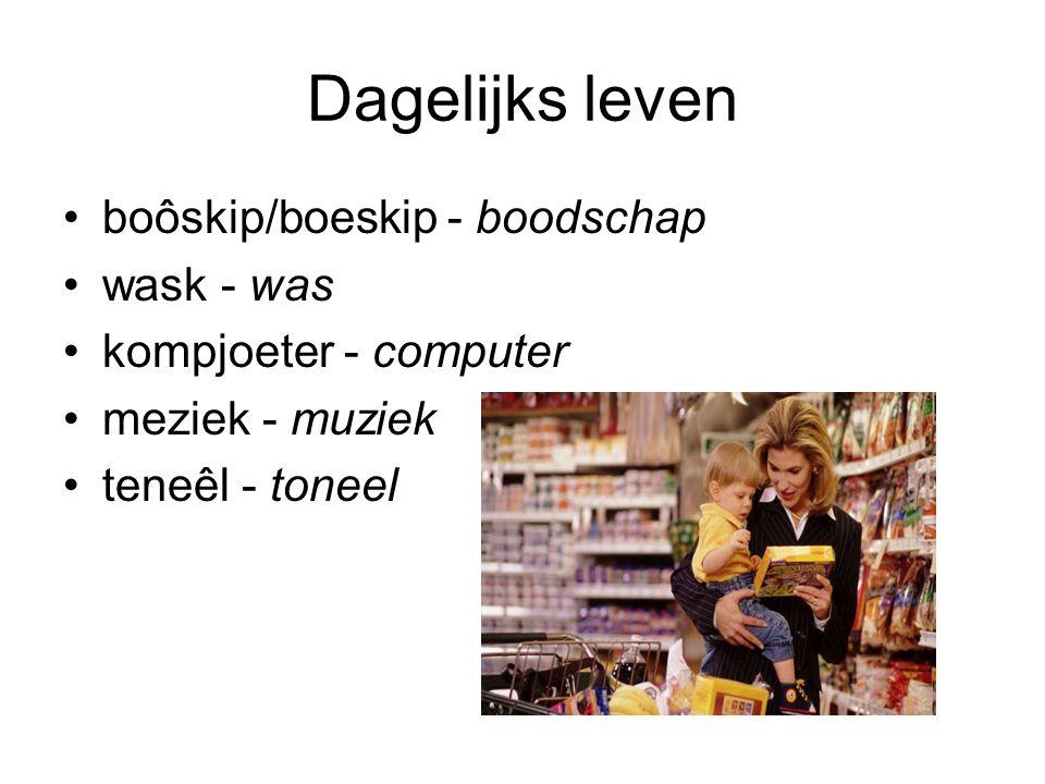 Dagelijks leven boôskip/boeskip - boodschap wask - was kompjoeter - computer meziek - muziek teneêl - toneel