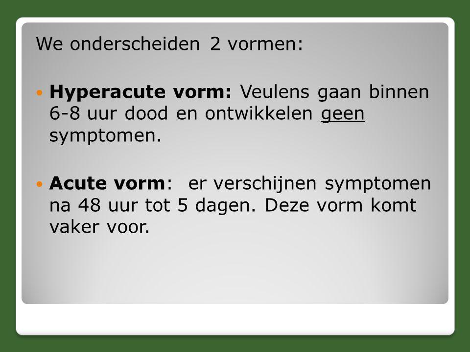 We onderscheiden 2 vormen: Hyperacute vorm: Veulens gaan binnen 6-8 uur dood en ontwikkelen geen symptomen. Acute vorm: er verschijnen symptomen na 48