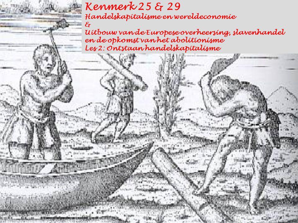 Kenmerk 25 & 29 Handelskapitalisme en wereldeconomie & Uitbouw van de Europese overheersing, slavenhandel en de opkomst van het abolitionisme Les 2: O