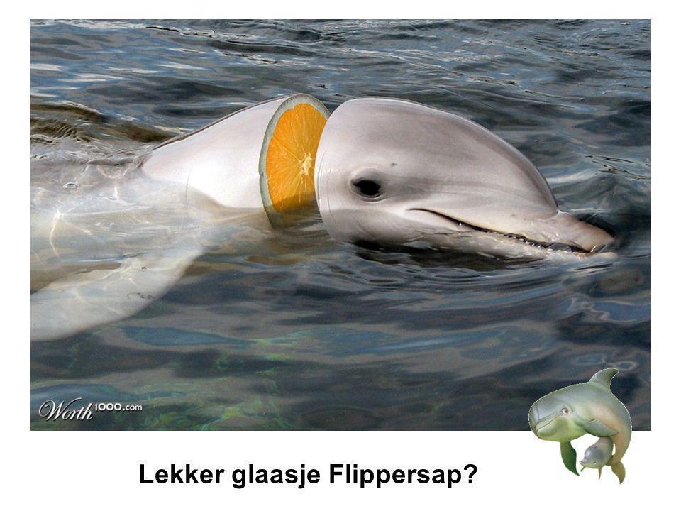 Lekker glaasje Flippersap
