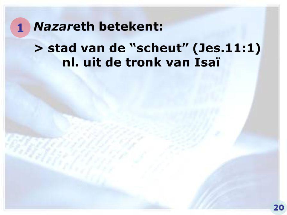 """Nazareth betekent: > stad van de """"scheut"""" (Jes.11:1) nl. uit de tronk van Isaï 1 20"""