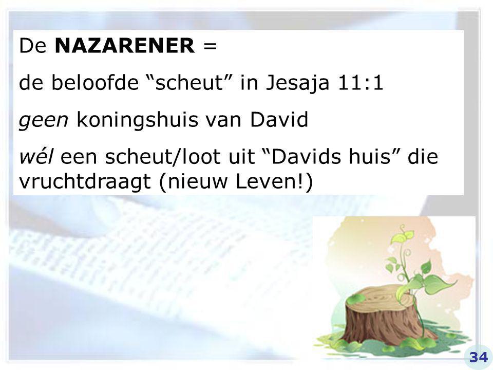 """De NAZARENER = de beloofde """"scheut"""" in Jesaja 11:1 geen koningshuis van David wél een scheut/loot uit """"Davids huis"""" die vruchtdraagt (nieuw Leven!) 34"""