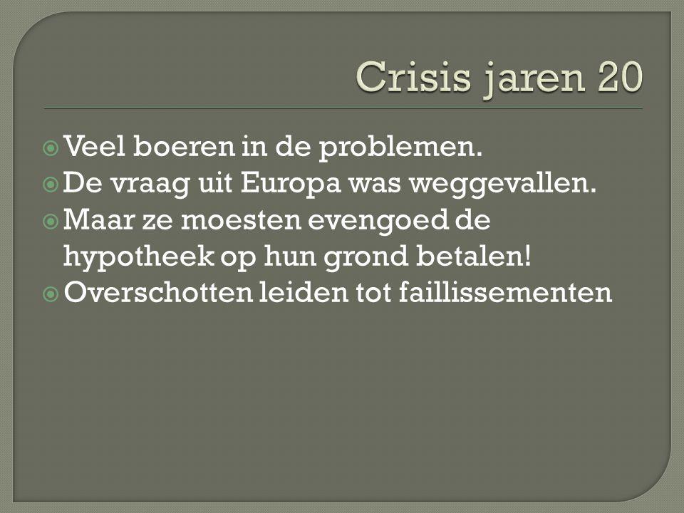  Veel boeren in de problemen.  De vraag uit Europa was weggevallen.  Maar ze moesten evengoed de hypotheek op hun grond betalen!  Overschotten lei