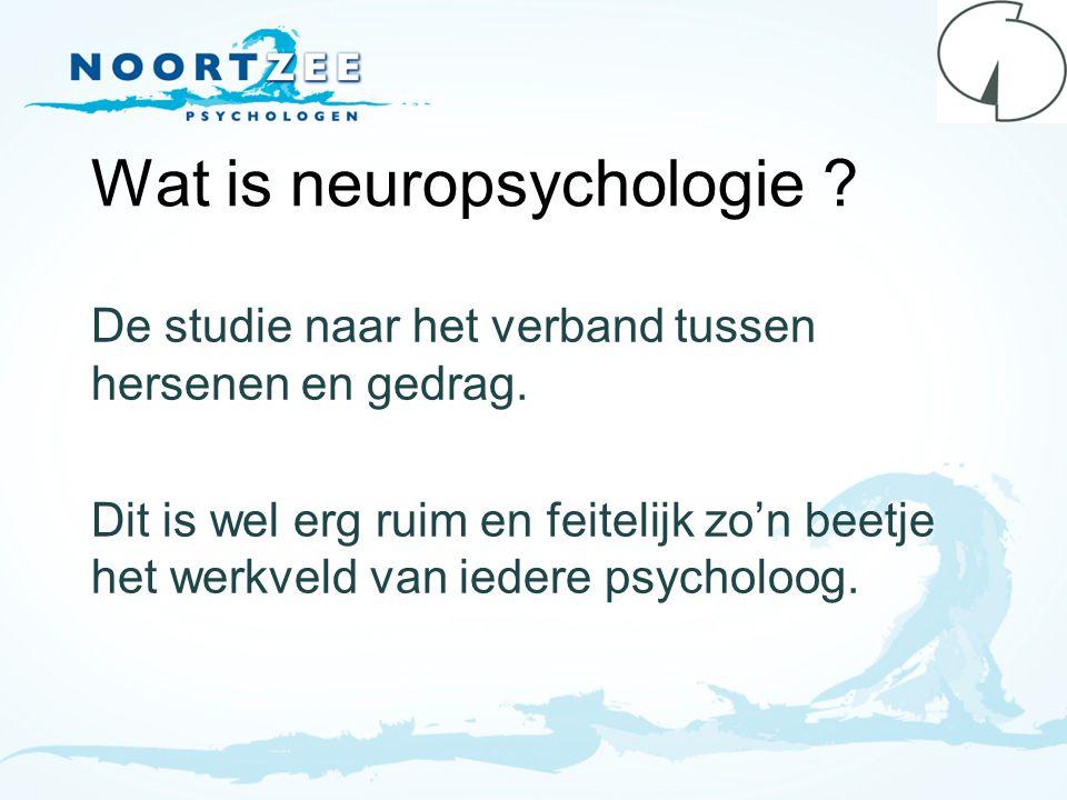 Wat is neuropsychologie ? De studie naar het verband tussen hersenen en gedrag. Dit is wel erg ruim en feitelijk zo'n beetje het werkveld van iedere p