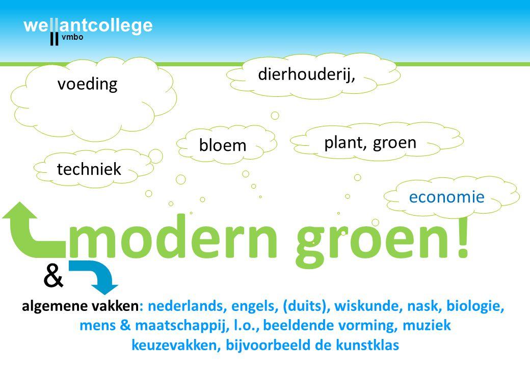 2011 okt bao docenten wellantcollege ll vmbo modern groen! algemene vakken: nederlands, engels, (duits), wiskunde, nask, biologie, mens & maatschappij