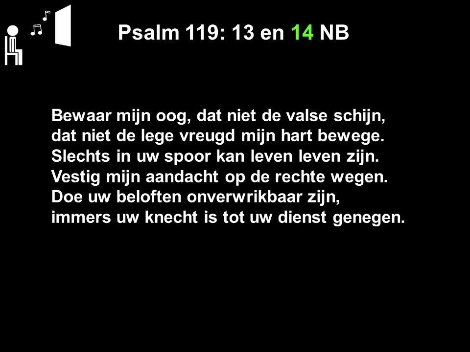 Psalm 119: 13 en 14 NB Bewaar mijn oog, dat niet de valse schijn, dat niet de lege vreugd mijn hart bewege. Slechts in uw spoor kan leven leven zijn.