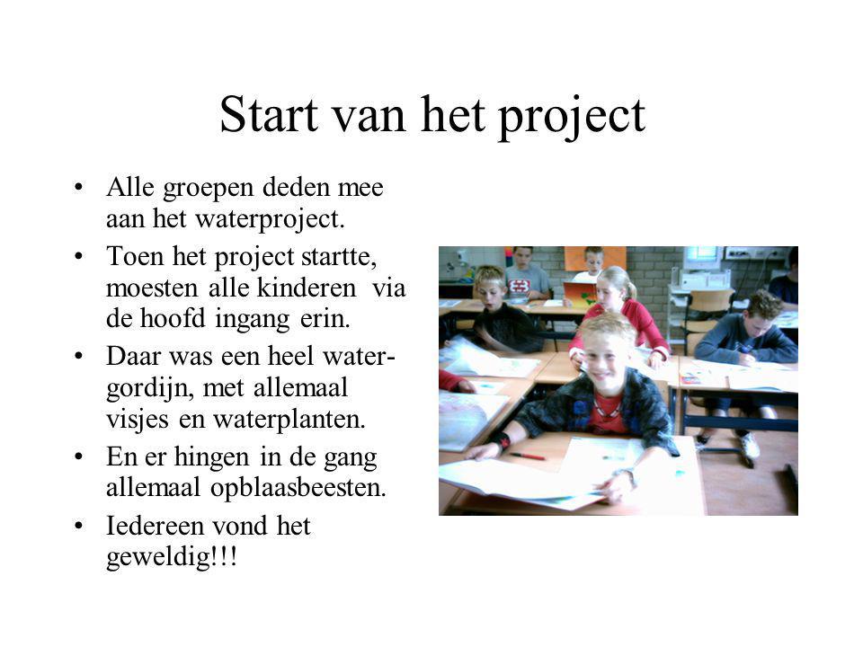 Begin van het project Hier zie je op het schilderij foto's waarop staat het begin van het waterproject. De oudervereniging en een paar leerkrachten ha