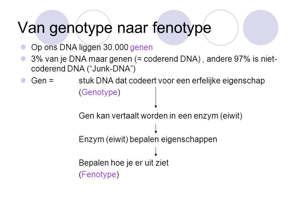 1=oude DNA streng 2=replicate plaatsen 3=DNA-polymerase 4=DNA-ligase 5=DNA fragmenten 6=volgend streng (lagging strand) 7=leidende streng 8=helicase 9 = single-strand binding proteins 8 9 1)Benoem de onderdelen in de afbeelding 2)Vertel in eigen woorden wat er in bovenstaande afbeelding gebeurt