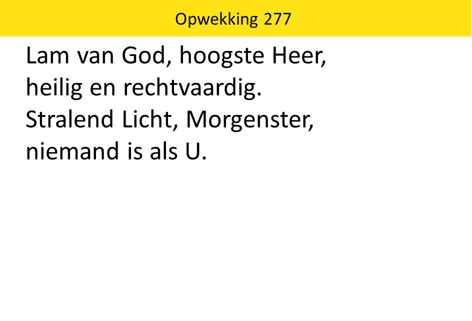 Lam van God, hoogste Heer, heilig en rechtvaardig. Stralend Licht, Morgenster, niemand is als U. Opwekking 277