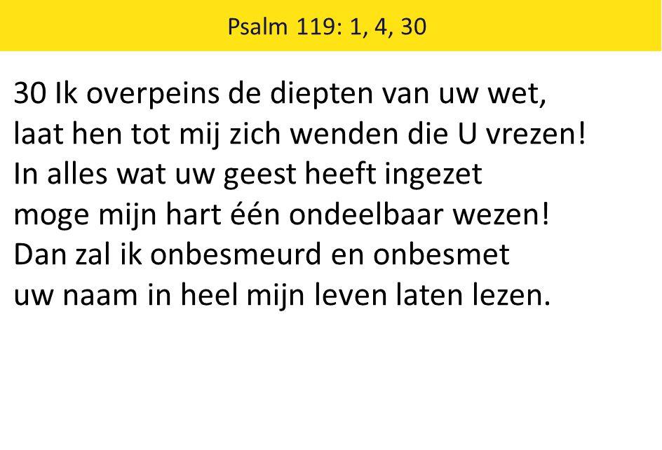 Psalm 119: 1, 4, 30 30 Ik overpeins de diepten van uw wet, laat hen tot mij zich wenden die U vrezen! In alles wat uw geest heeft ingezet moge mijn ha