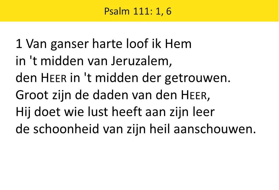 Psalm 111: 1, 6 1 Van ganser harte loof ik Hem in 't midden van Jeruzalem, den H EER in 't midden der getrouwen. Groot zijn de daden van den H EER, Hi