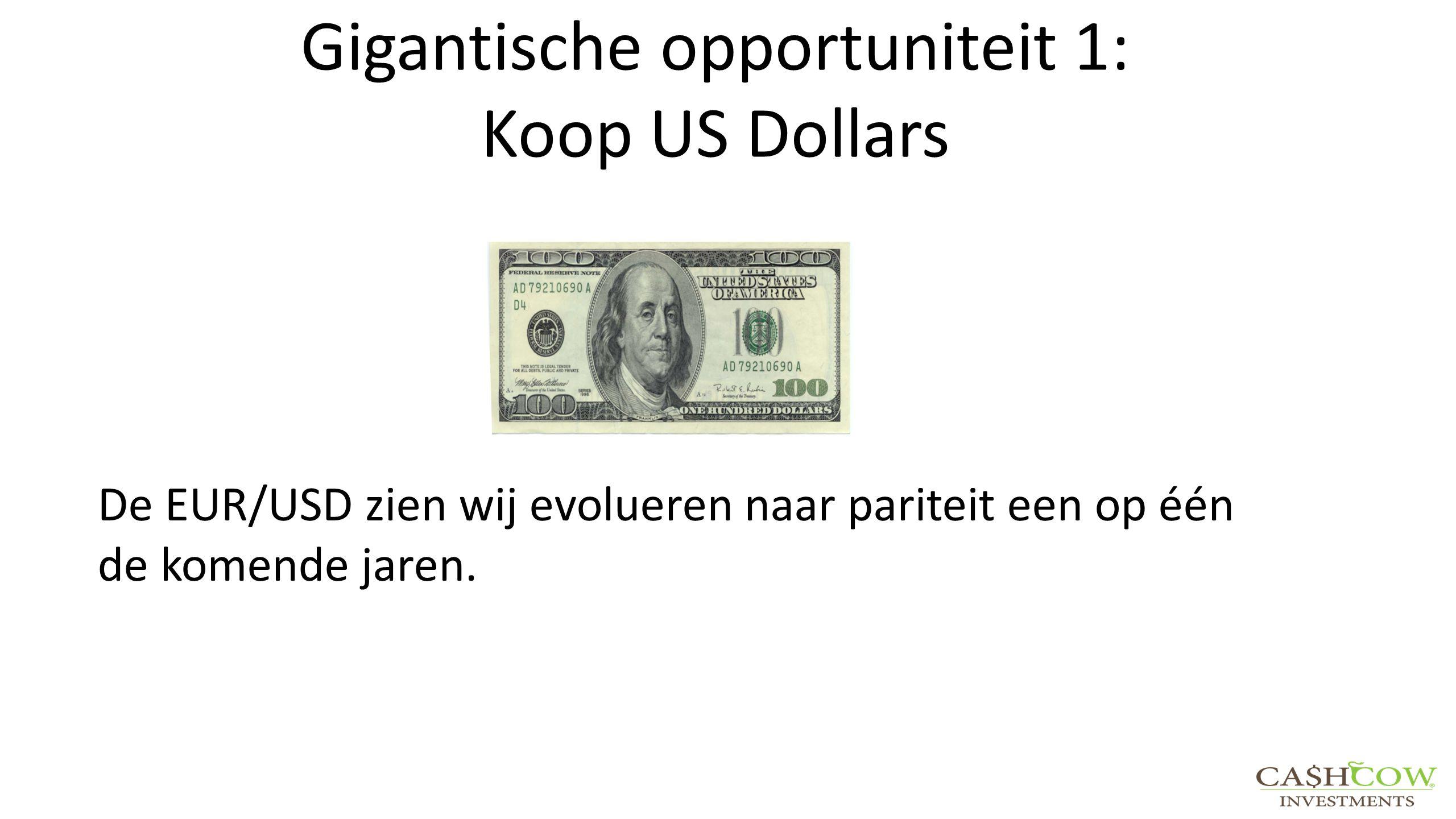 Gigantische opportuniteit 1: Koop US Dollars De EUR/USD zien wij evolueren naar pariteit een op één de komende jaren.