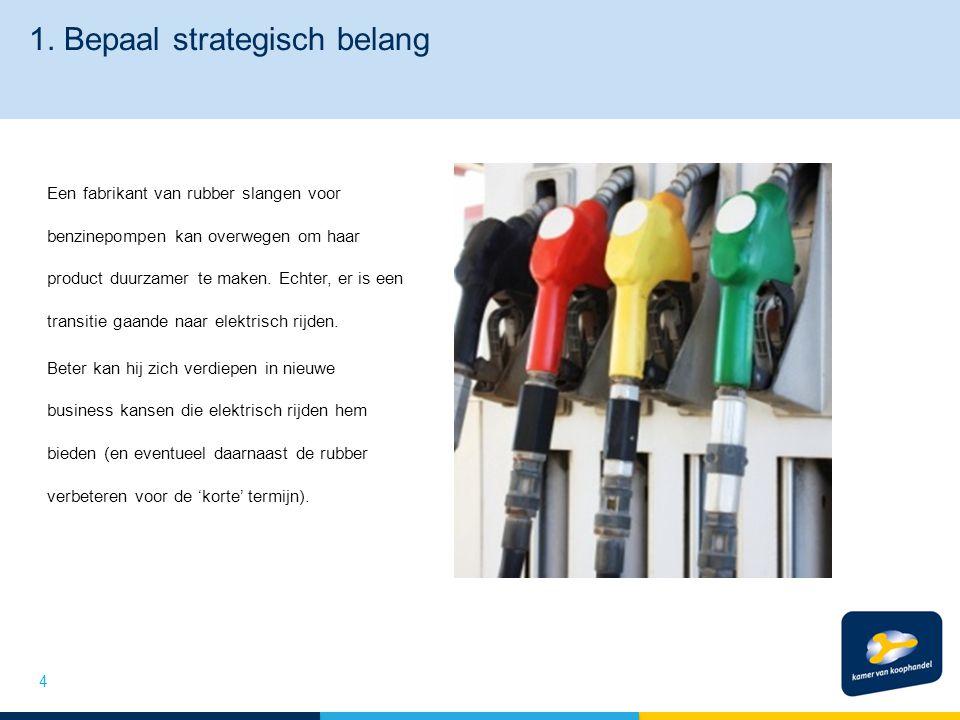 1. Bepaal strategisch belang Een fabrikant van rubber slangen voor benzinepompen kan overwegen om haar product duurzamer te maken. Echter, er is een t