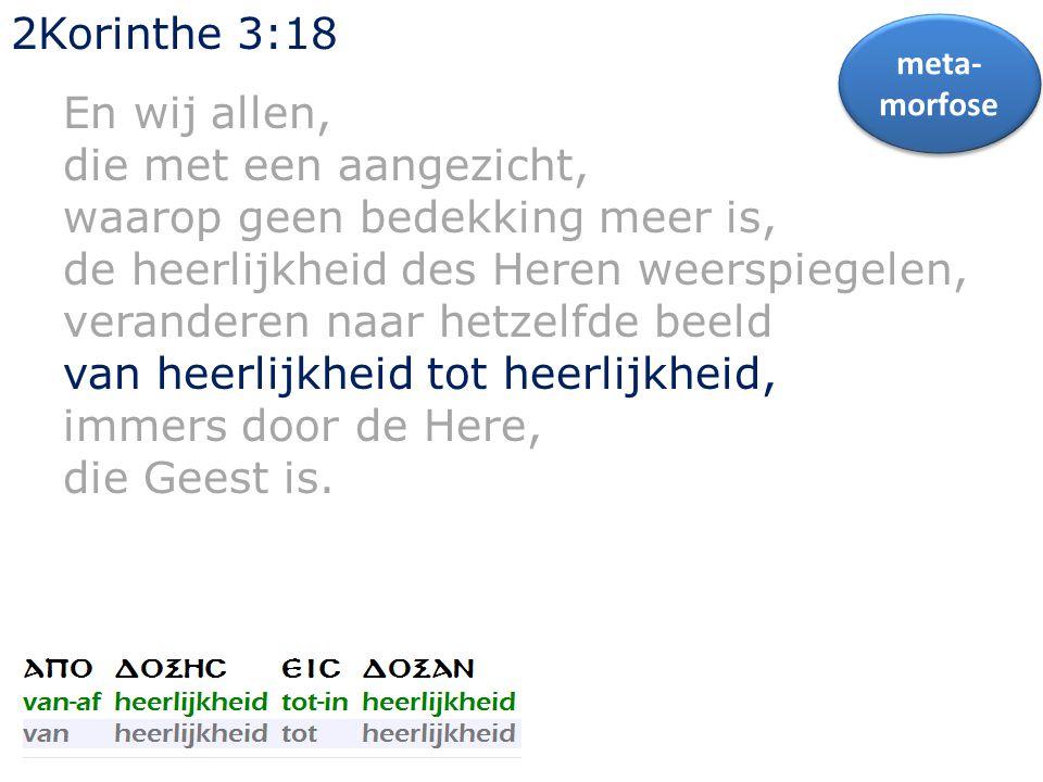2Korinthe 3:18 En wij allen, die met een aangezicht, waarop geen bedekking meer is, de heerlijkheid des Heren weerspiegelen, veranderen naar hetzelfde beeld van heerlijkheid tot heerlijkheid, immers door de Here, die Geest is.