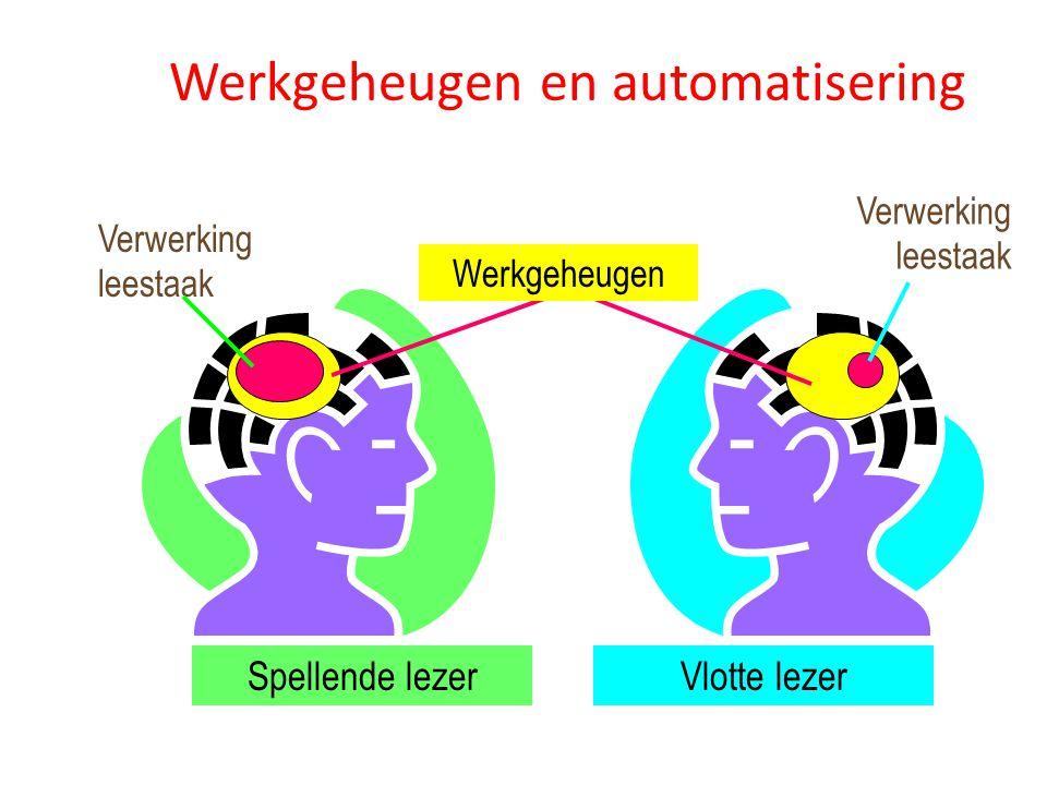 Werkgeheugen en automatisering Verwerking leestaak Verwerking leestaak Spellende lezerVlotte lezer Werkgeheugen