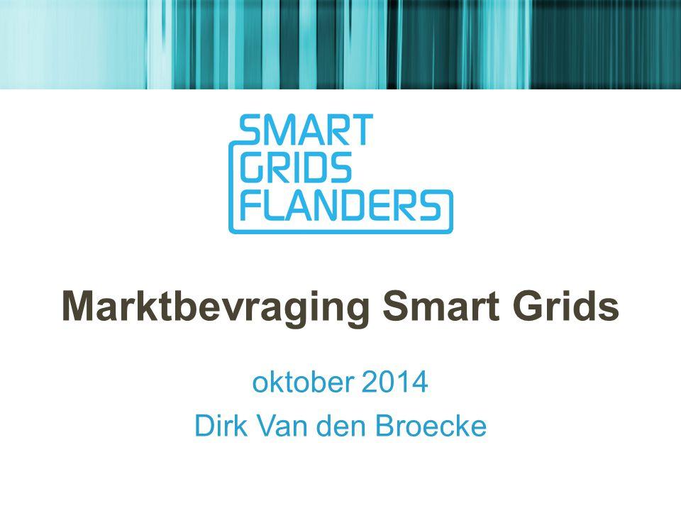 Marktbevraging Smart Grids oktober 2014 Dirk Van den Broecke