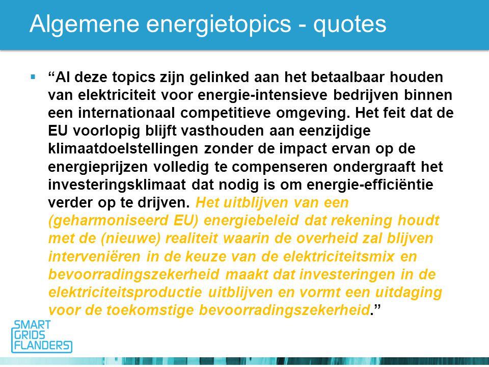 Algemene energietopics - quotes  Al deze topics zijn gelinked aan het betaalbaar houden van elektriciteit voor energie-intensieve bedrijven binnen een internationaal competitieve omgeving.