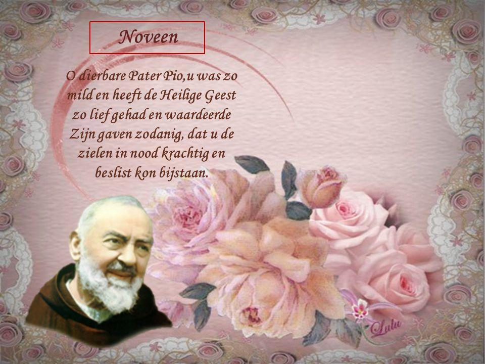 We zien nu een klein gedeelte van de mooie noveen tot de Heilige Pater Pio (14 tot 22 september 2014) –de zesde dag. Door Fra.Bruno Borelli, geestelij