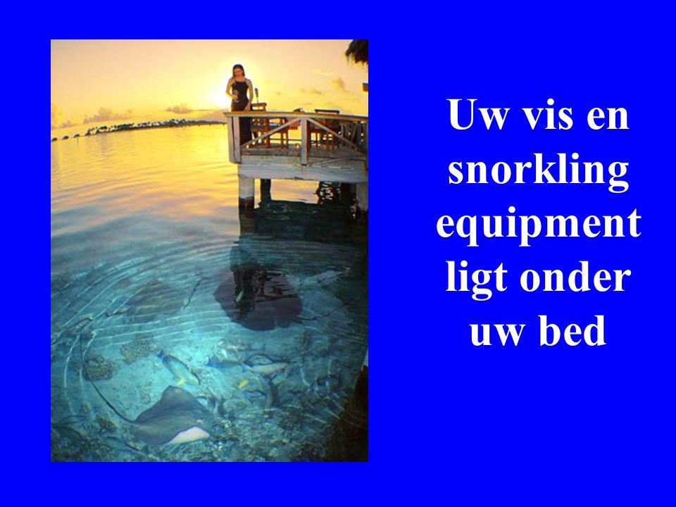 Uw vis en snorkling equipment ligt onder uw bed
