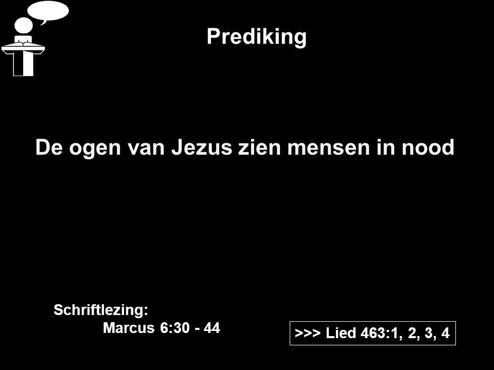 Prediking De ogen van Jezus zien mensen in nood >>> Lied 463:1, 2, 3, 4 Schriftlezing: Marcus 6:30 - 44