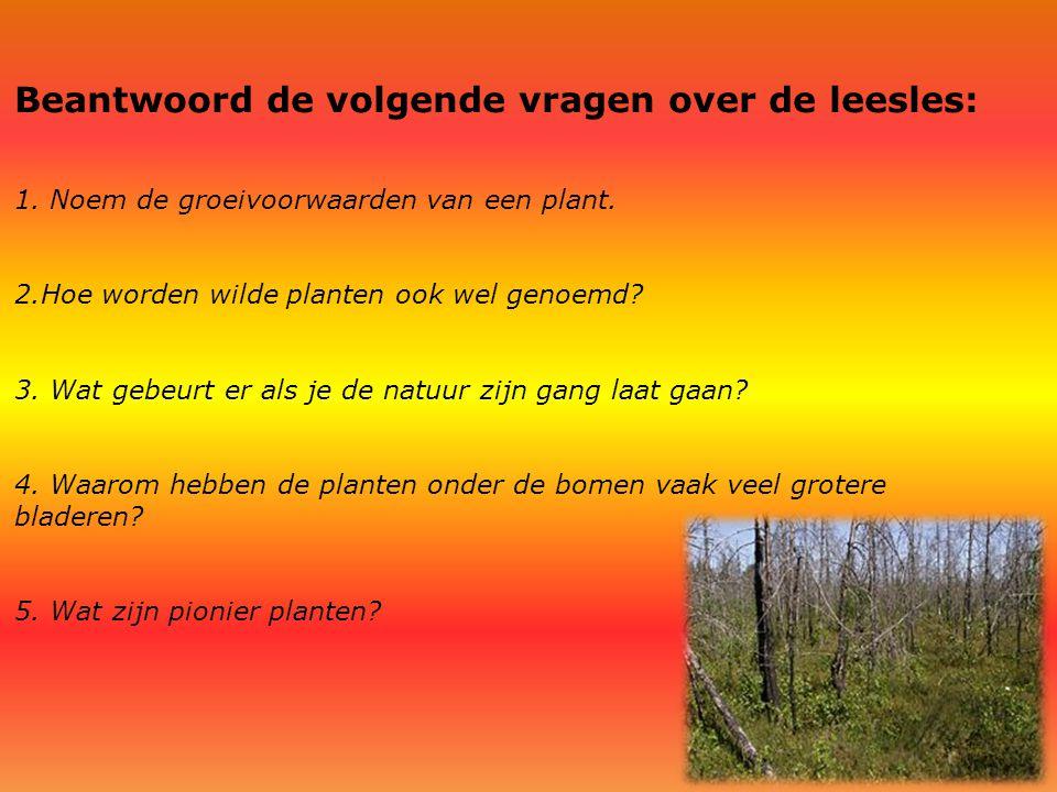 Beantwoord de volgende vragen over de leesles: 1. Noem de groeivoorwaarden van een plant. 2.Hoe worden wilde planten ook wel genoemd? 3. Wat gebeurt e