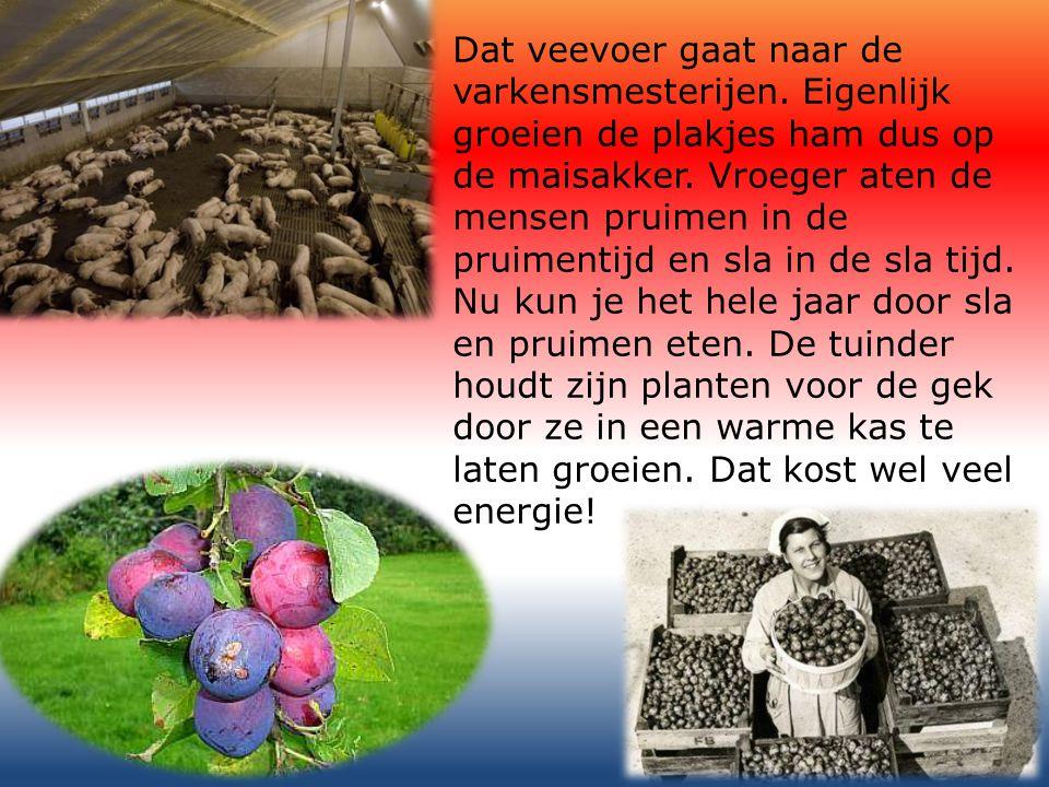 We halen ook groenten en vruchten uit warme landen hier naar toe.