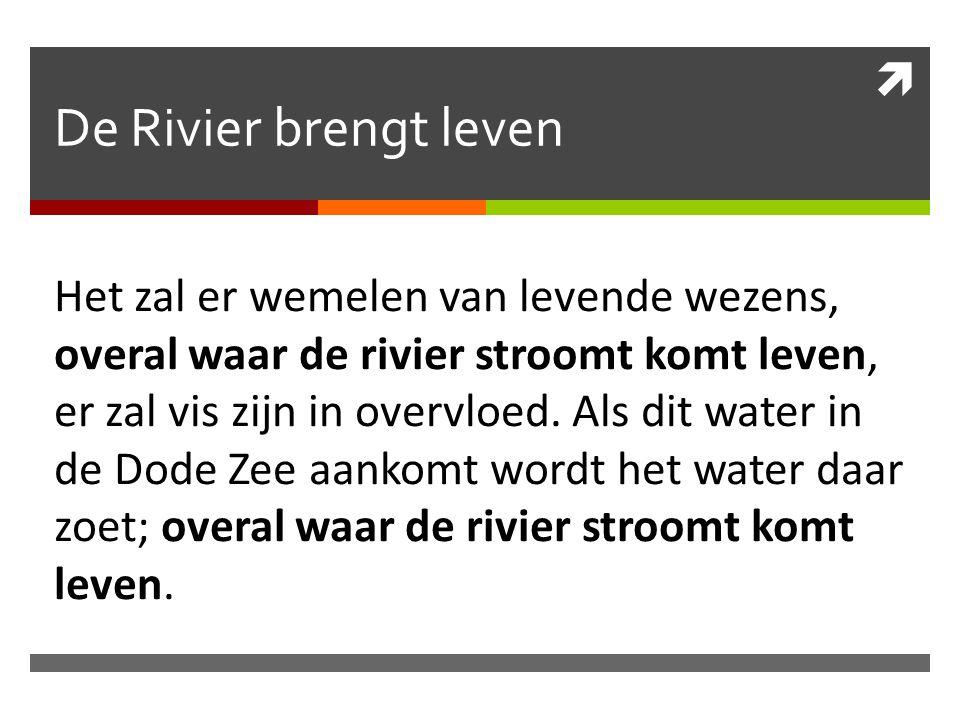  De Rivier brengt leven Het zal er wemelen van levende wezens, overal waar de rivier stroomt komt leven, er zal vis zijn in overvloed. Als dit water