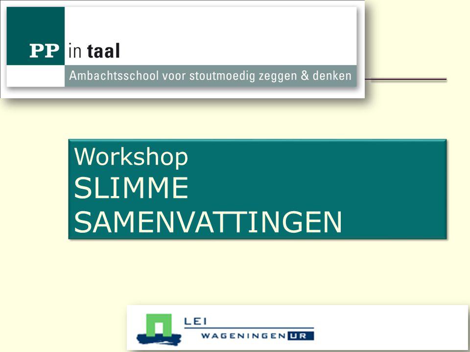 1 Workshop SLIMME SAMENVATTINGEN