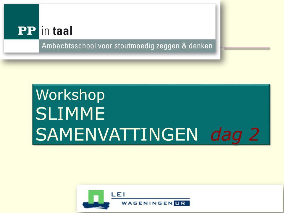 50 Workshop SLIMME SAMENVATTINGEN dag 2