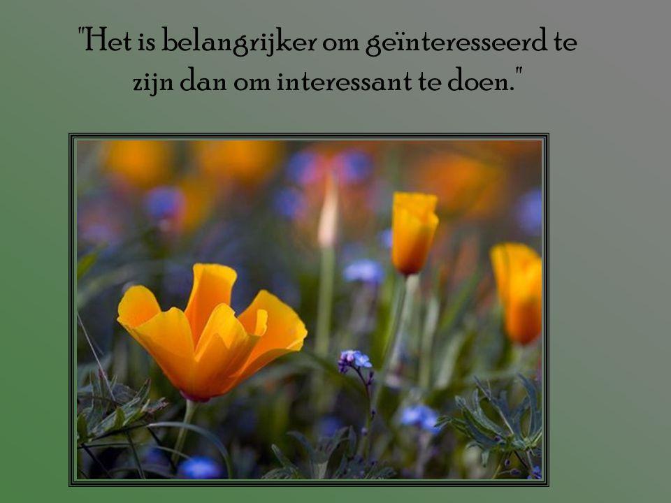 Het is belangrijker om geïnteresseerd te zijn dan om interessant te doen.