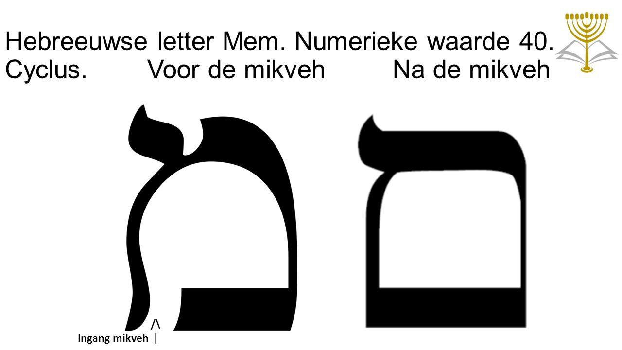 Hebreeuwse letter Mem. Numerieke waarde 40. Cyclus. Voor de mikveh Na de mikveh Ingang mikveh /\ |