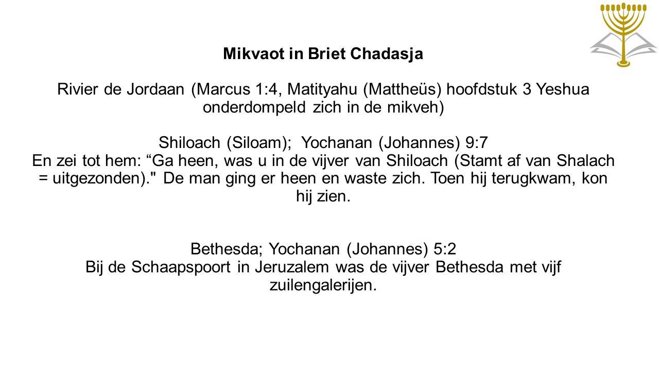 Mikvaot in Briet Chadasja Rivier de Jordaan (Marcus 1:4, Matityahu (Mattheüs) hoofdstuk 3 Yeshua onderdompeld zich in de mikveh) Shiloach (Siloam); Yo
