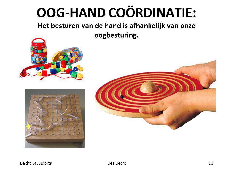 OOG-HAND COÖRDINATIE: Het besturen van de hand is afhankelijk van onze oogbesturing. Becht S( up) portsBea Becht11