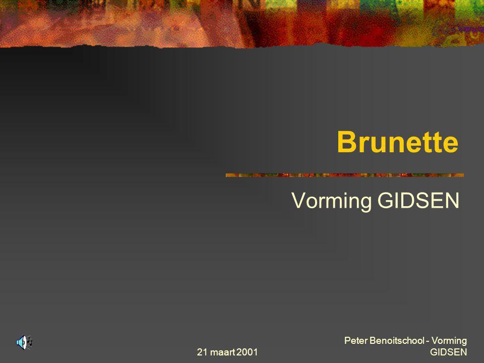 21 maart 2001 Peter Benoitschool - Vorming GIDSEN Theorie « stap voor stap »  Internet adressering DNS (Domain Name Services) Domein Naam van een van de projekten opgestart door de Stad Brussel Geeft protocol weer (hier Web server) www.brunette.brucity.be