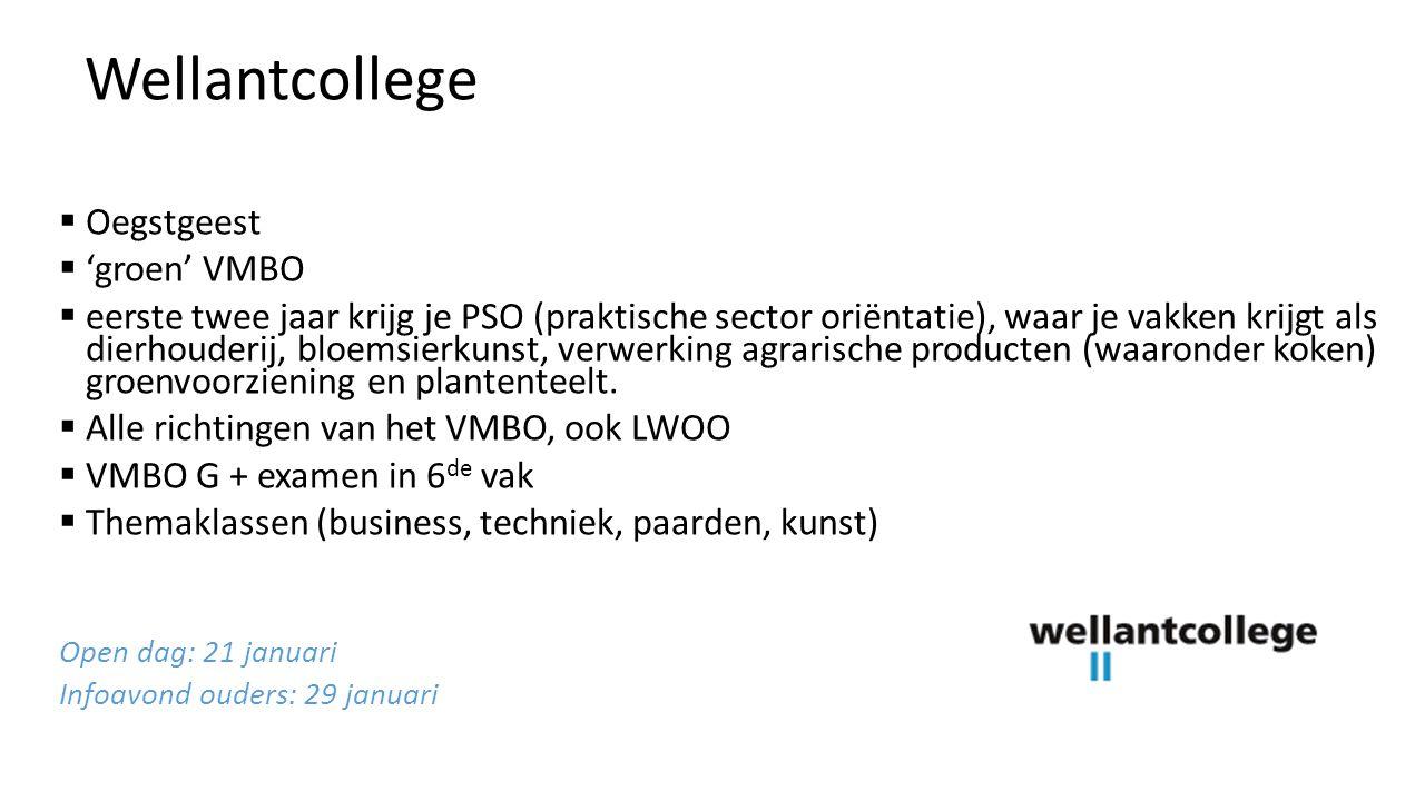  Leiden 2 vestigingen  Eén richting, géén brugjaar  Moet een VWO-advies van school zijn  In de tweede fase verplicht 1 klassieke taal open dagen: