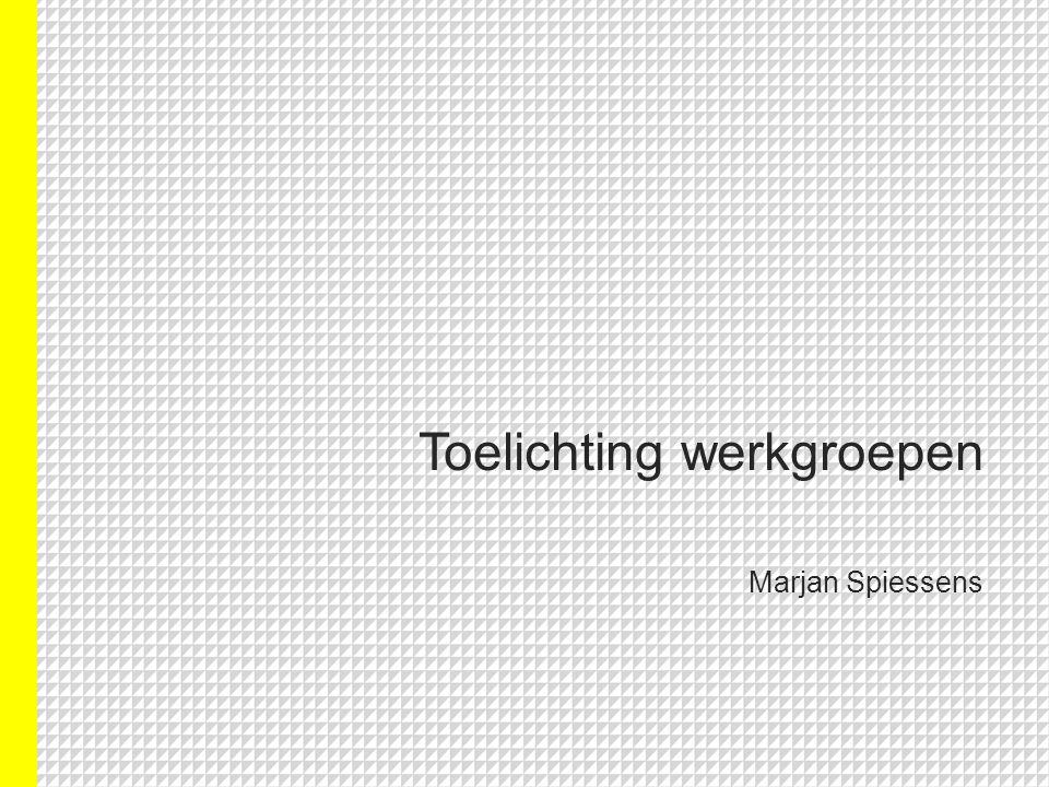 Toelichting werkgroepen Marjan Spiessens