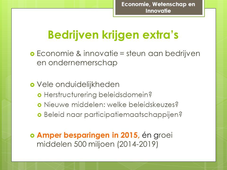 Bedrijven krijgen extra's  Economie & innovatie = steun aan bedrijven en ondernemerschap  Vele onduidelijkheden  Herstructurering beleidsdomein.