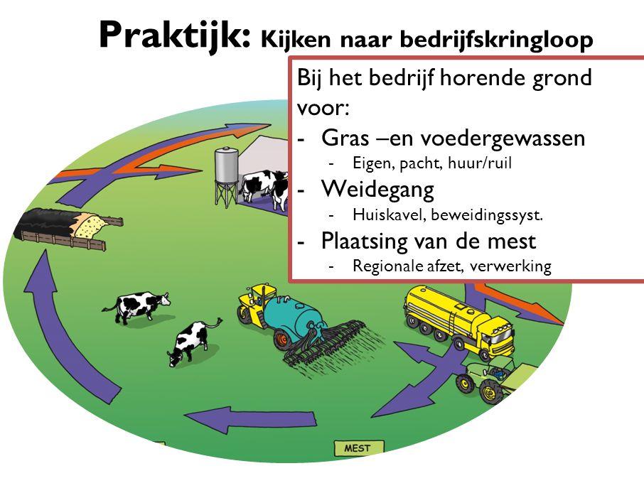 Praktijk: Kijken naar bedrijfskringloop Bij het bedrijf horende grond voor: -Gras –en voedergewassen -Eigen, pacht, huur/ruil -Weidegang -Huiskavel, beweidingssyst.
