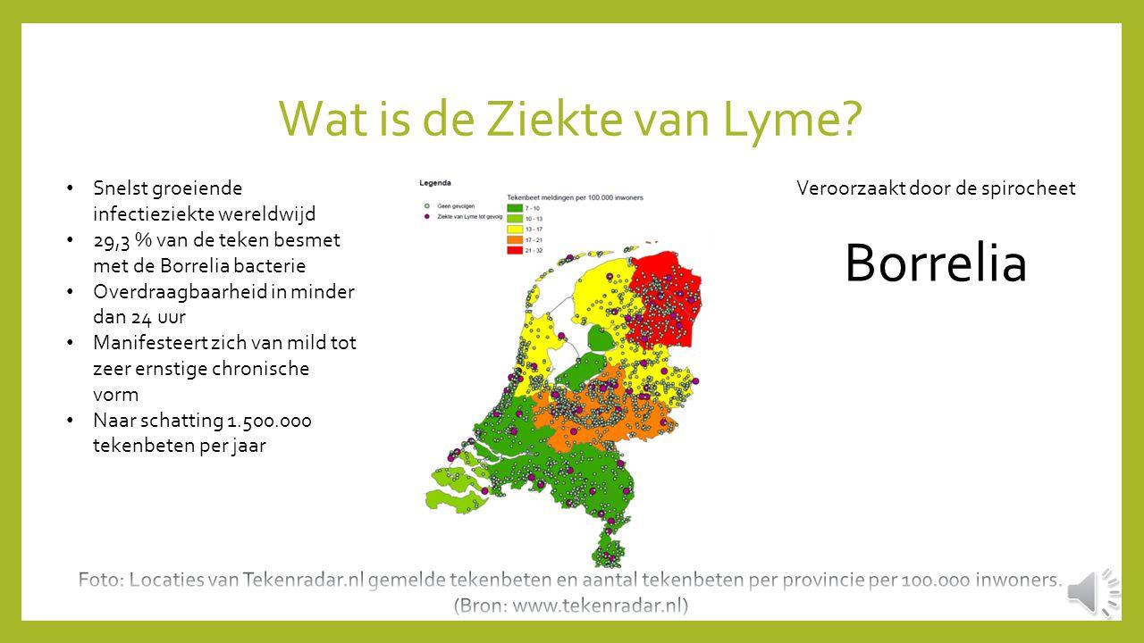 Wat is de Ziekte van Lyme.