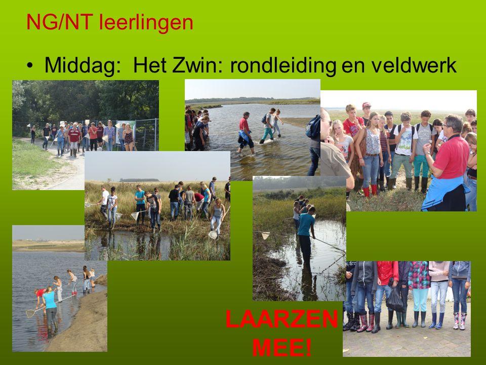 NG/NT leerlingen Middag: Het Zwin: rondleiding en veldwerk LAARZEN MEE!