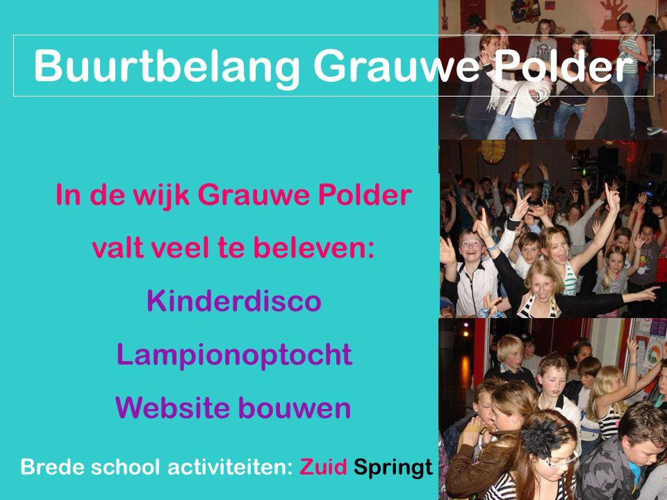 Buurtbelang Grauwe Polder In de wijk Grauwe Polder valt veel te beleven: Kinderdisco Lampionoptocht Website bouwen Brede school activiteiten: Zuid Springt Eruit
