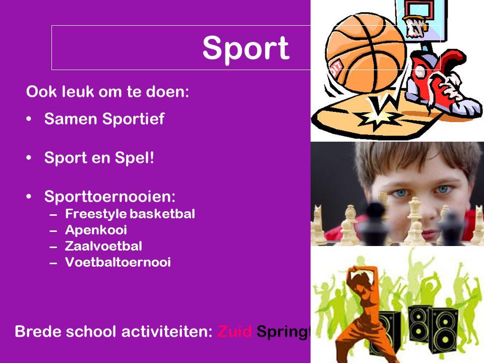 Brede school activiteiten: Zuid Springt Eruit Sport Ook leuk om te doen: Samen Sportief Sport en Spel! Sporttoernooien: –Freestyle basketbal –Apenkooi
